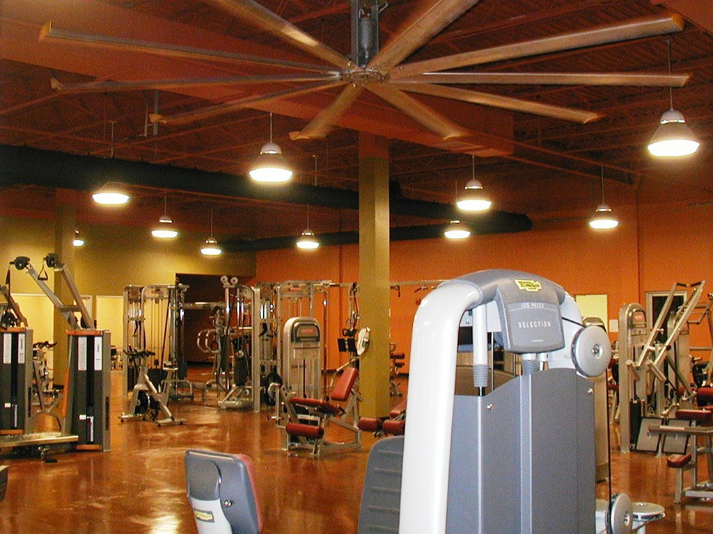Bally's Total Fitness